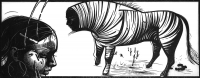 Zebra-im-Kopf